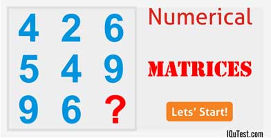 IQ Test Numerical Number Matrices